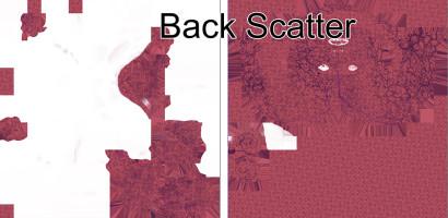 Back Scatter